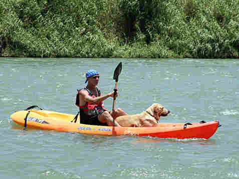 Eric Ellman, executive director of Los Caminos del Rio, and his dog, Buster, on a kayak.