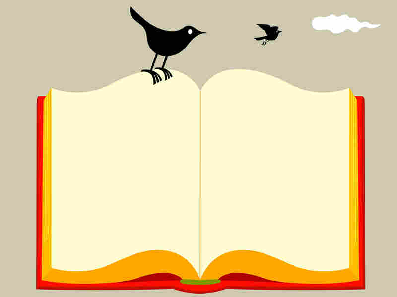 A bird on a book