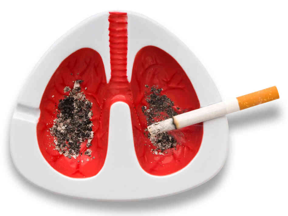 An artist's rendering of lungs filled with nicotine
