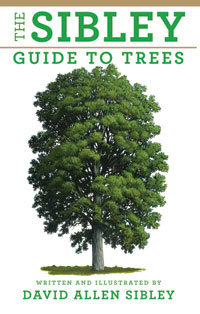 'The Sibley Guide to Trees'