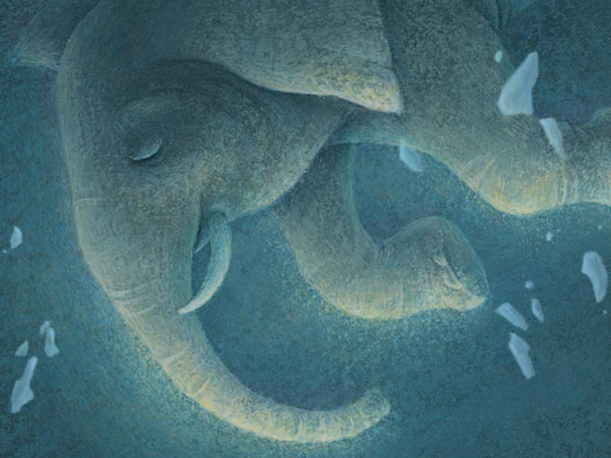 An Orphan An Elephant And A Hapless Magician Npr