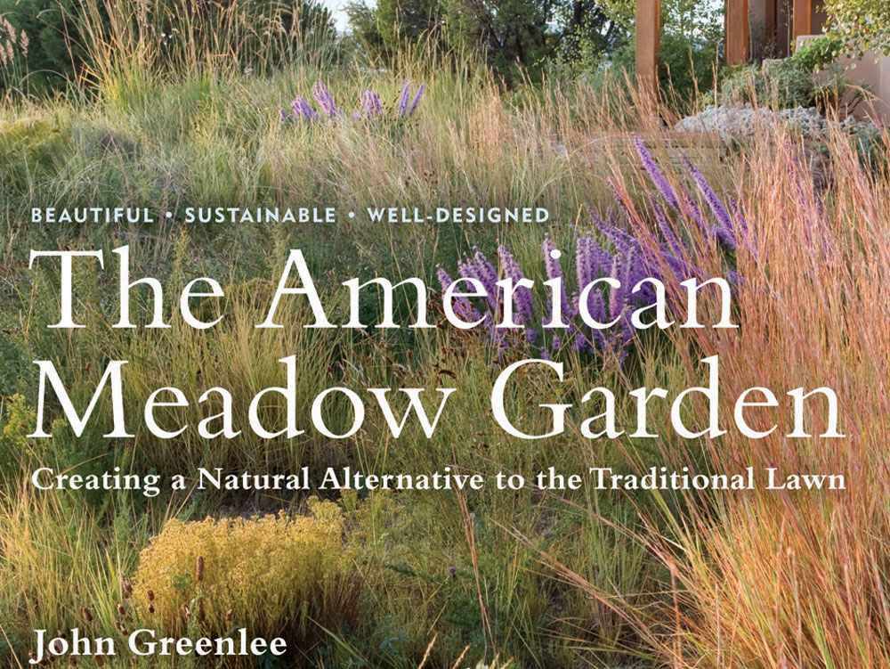 'The American Meadow Garen'