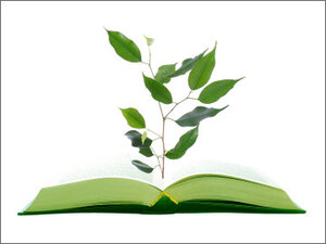 Illustration of a tree growing from a book.