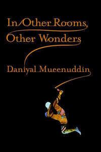 Custom: 'In Other Rooms, Other Wonders' by Daniyal Mueenduddin