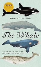'The Whale'