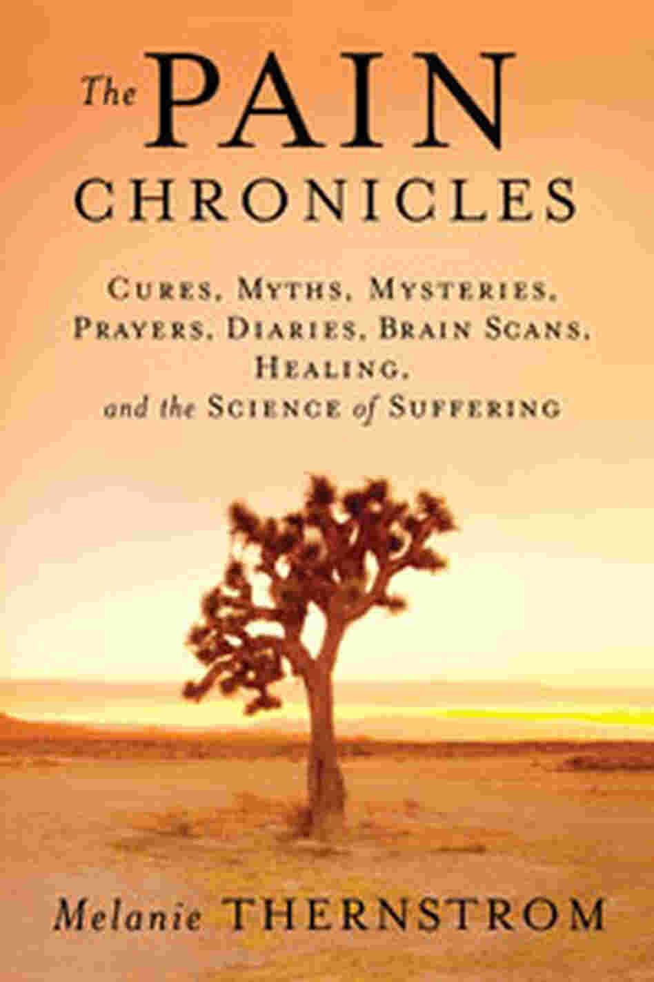 Cover of 'The Pain Chronicles'