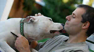 Jim Gorant and a pit bull