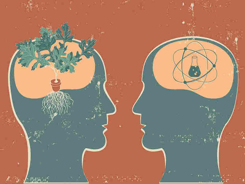 Illustration of brains