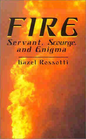 Fire by Hazel Rossotti