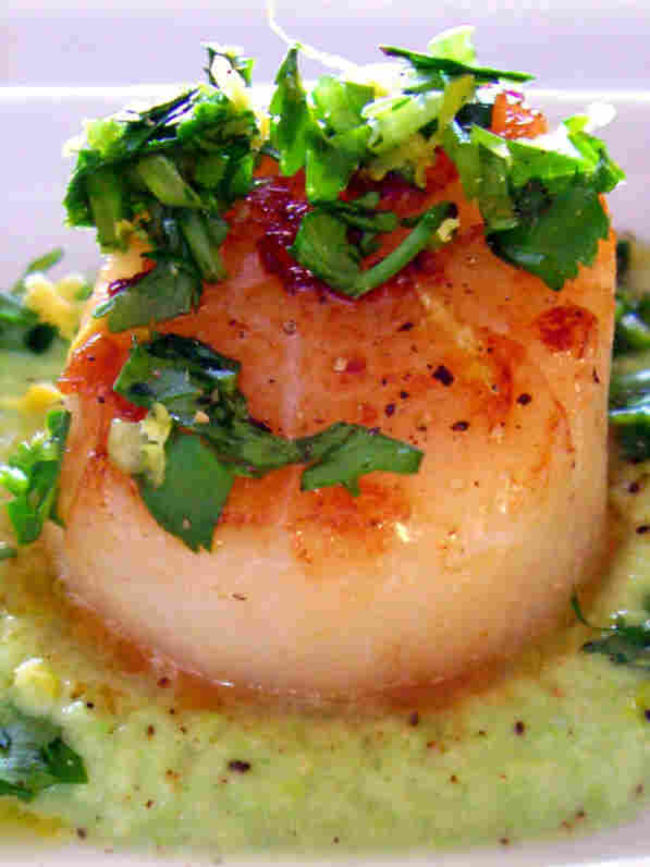 Seared Sea Scallops With Cilantro Gremolata And Pea Puree