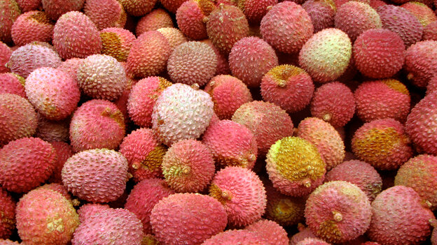 Lychee fruits at the market