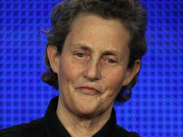 Temple Grandin was featured in the Oliver Sacks book An Anthropologist on Mars. (Getty Images)