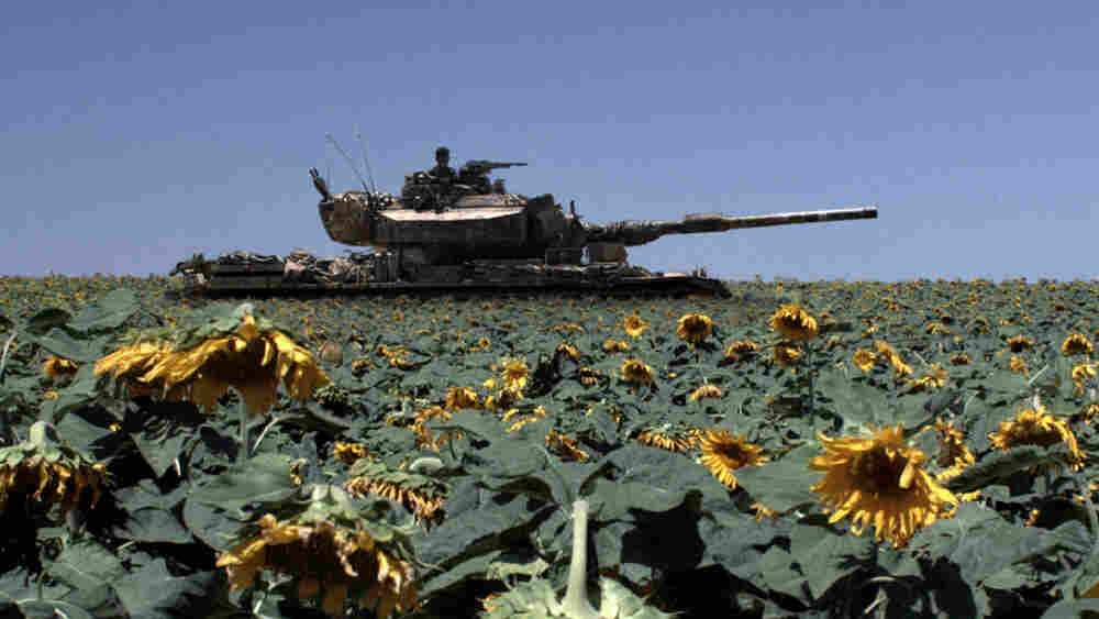 Tank Among Sunflowers
