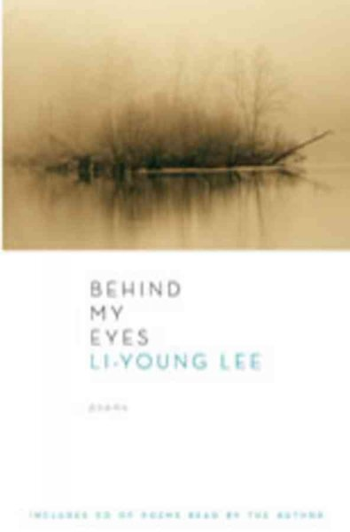 an analysis of li young lees poem the city in which i love you
