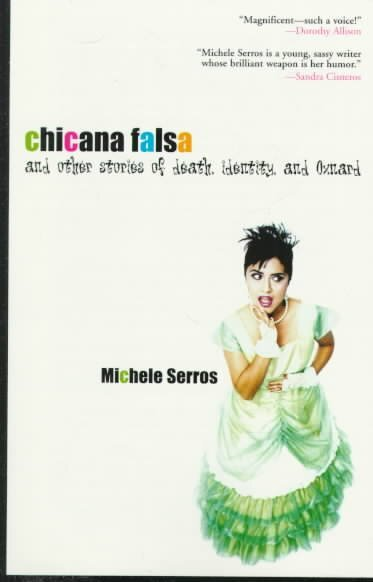 michele serros biography