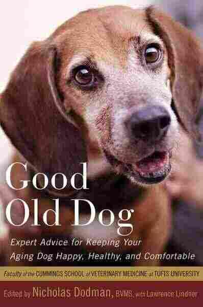 Good Old Dog