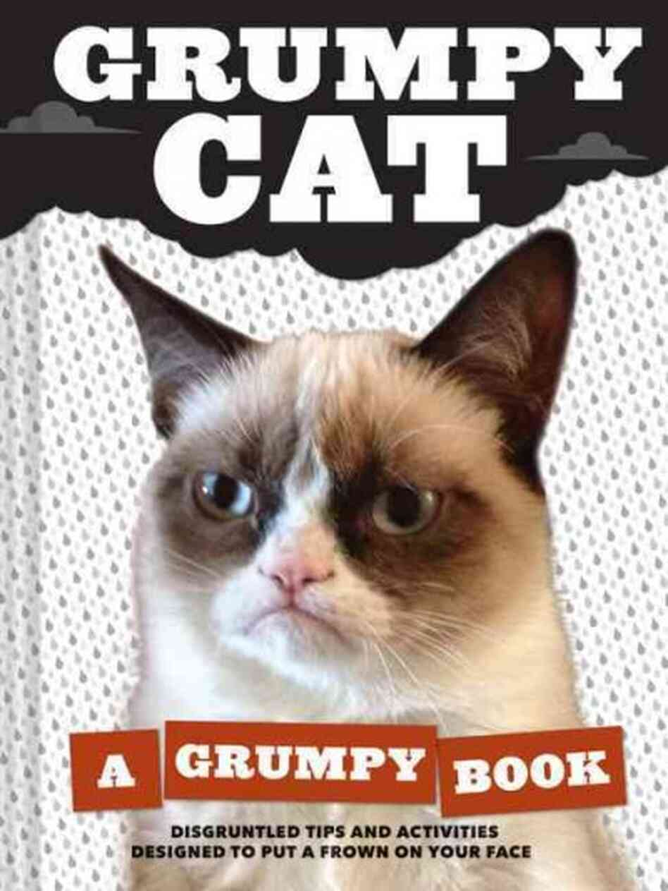 grumpy cat npr. Black Bedroom Furniture Sets. Home Design Ideas