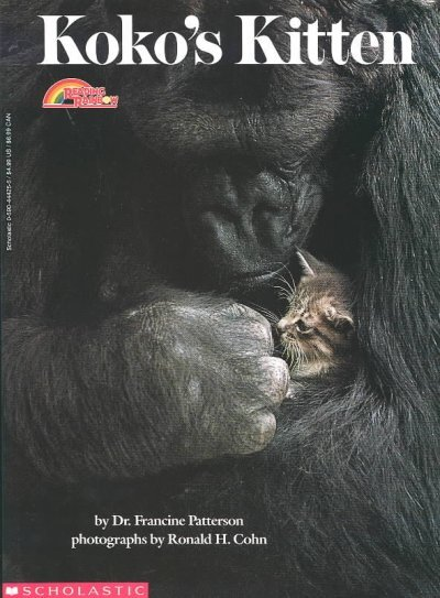 Koko's Kitten : NPR