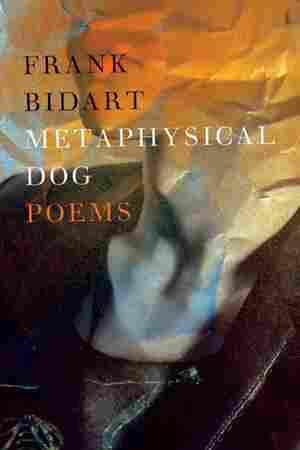 Metaphysical Dog