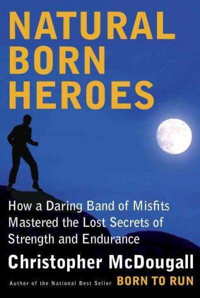 Image result for natural born heroes
