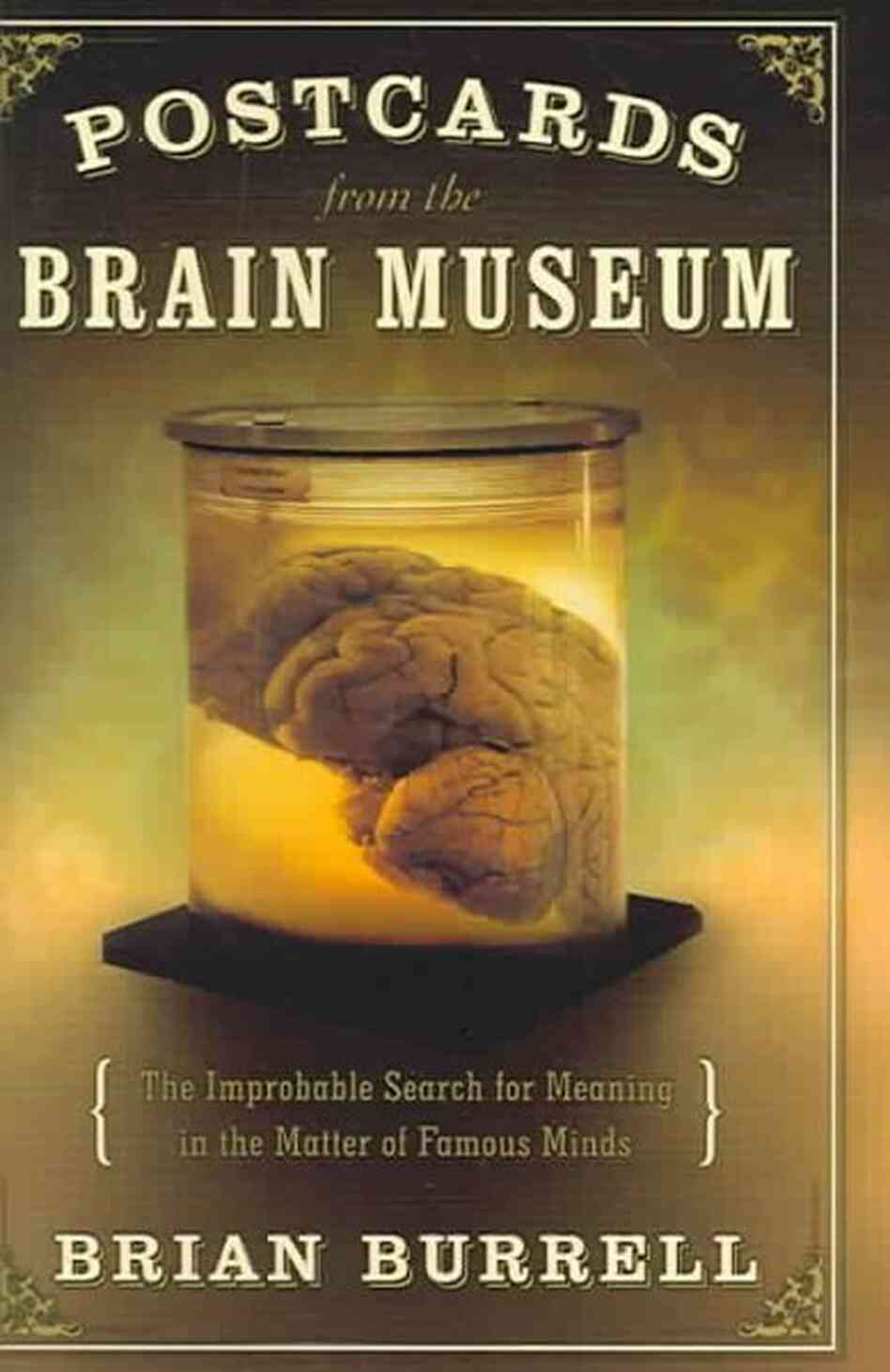 Postcards from the Brain Museum