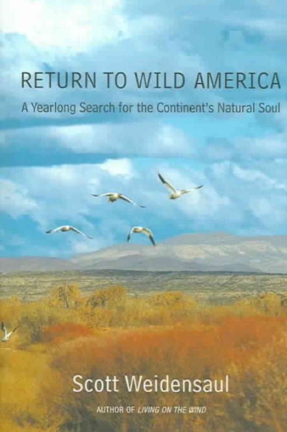 Return to Wild America