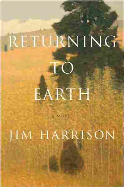 Returning to Earth