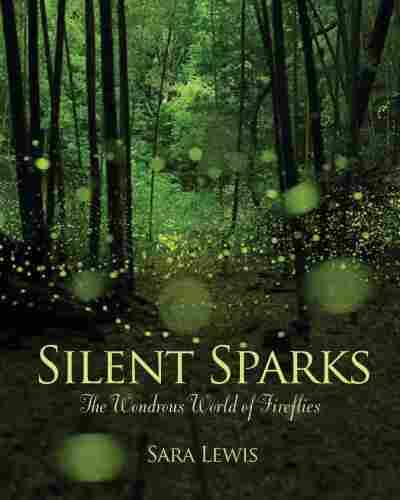 Silent Sparks