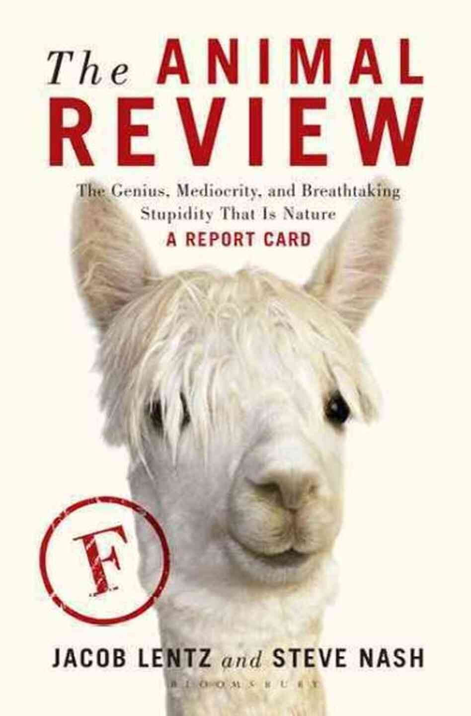 The Animal Review