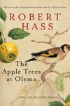 The Apple Trees at Olema