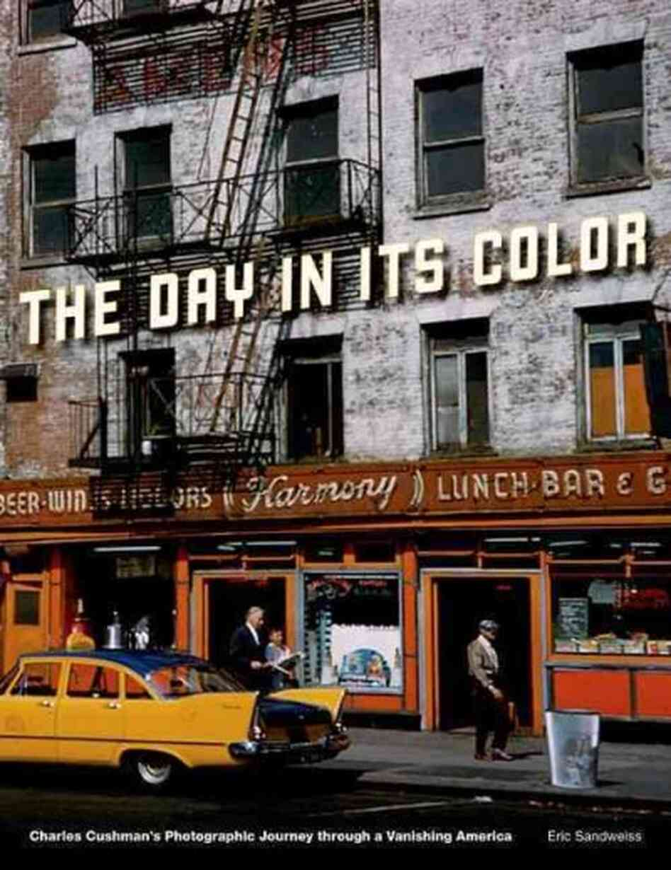 The Day in Its Color
