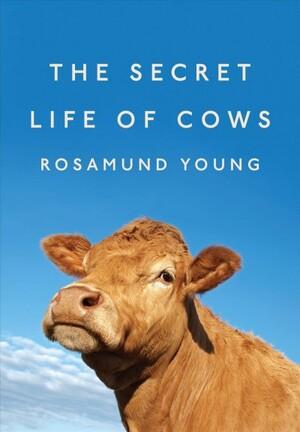 The secret story cow g - 1 10