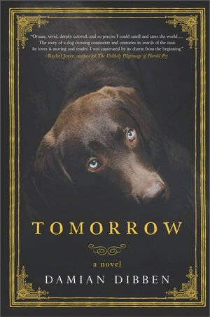 You Dont Have To Be A Dog Person To Enjoy Tomorrow Npr