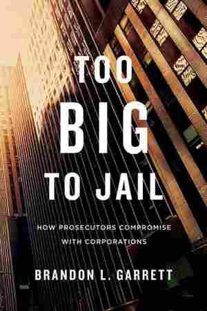 Too Big to Jail