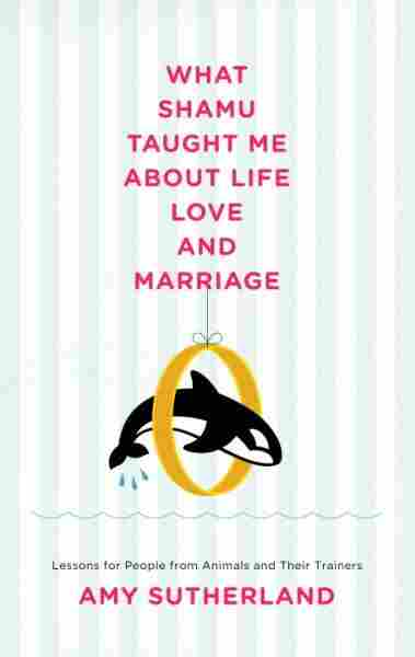 What Shamu Taught Me About Love and Marriage