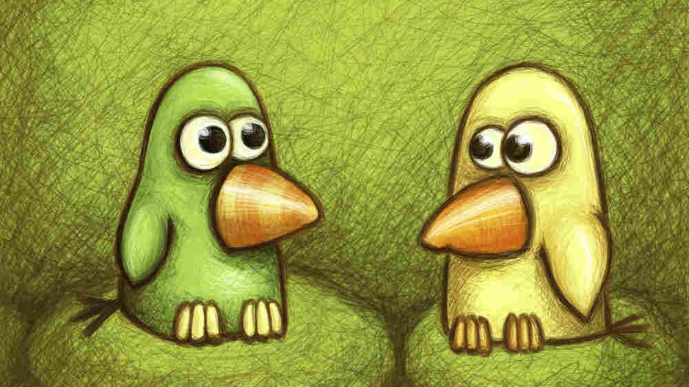 Cartoon birds, one green, one yellow. Credit: Aleksandra Khokhlova, iStockphoto.com.
