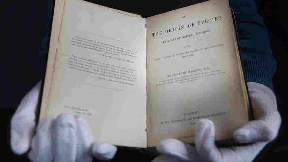 Book specialist Alex Dove holding a first edition of Charles Darwin's - The Origin of Species that w