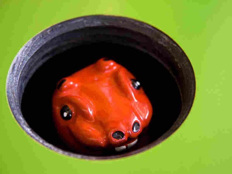 Whack-a-mole creature looks out of hole.