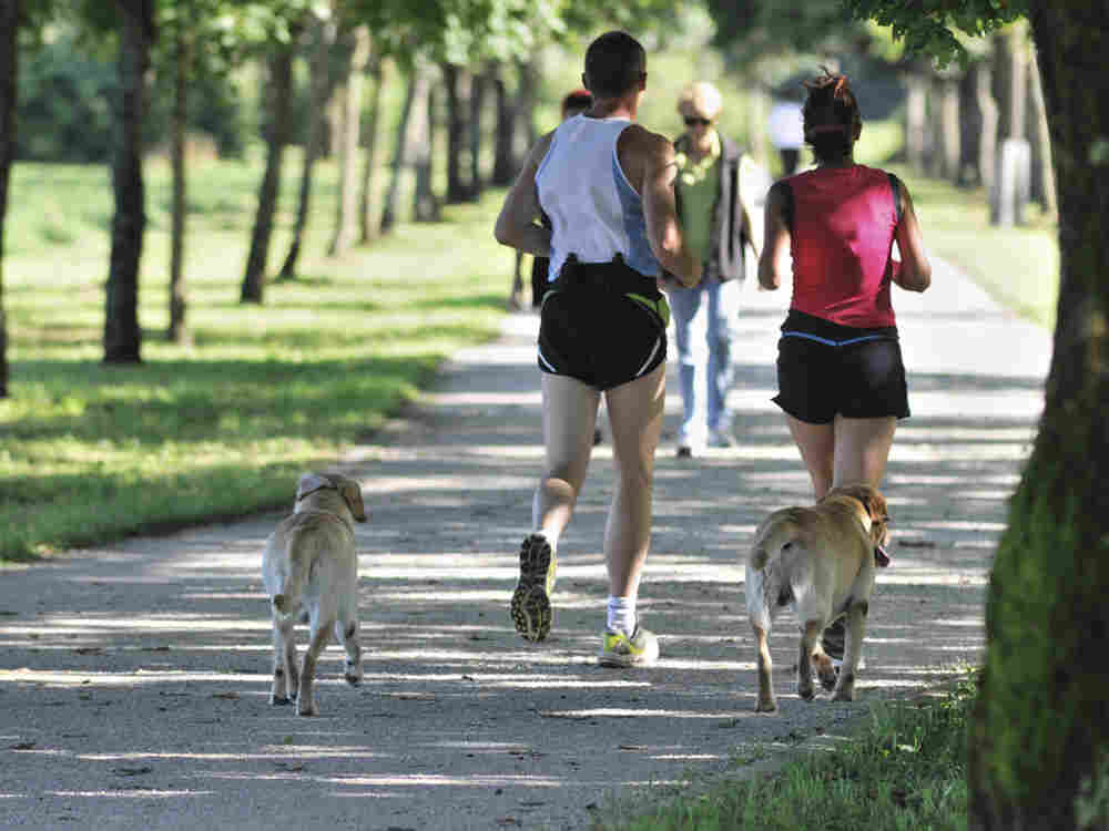 Two runners in the park