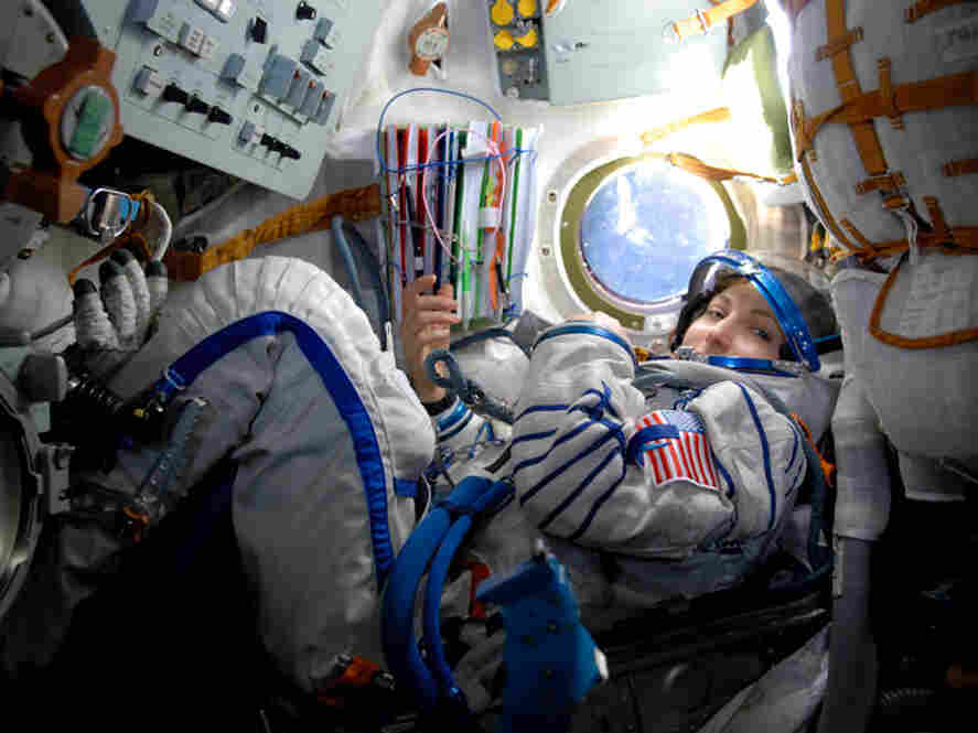 Anousheh Ansari became the first Muslim female to blast into space in 2006.
