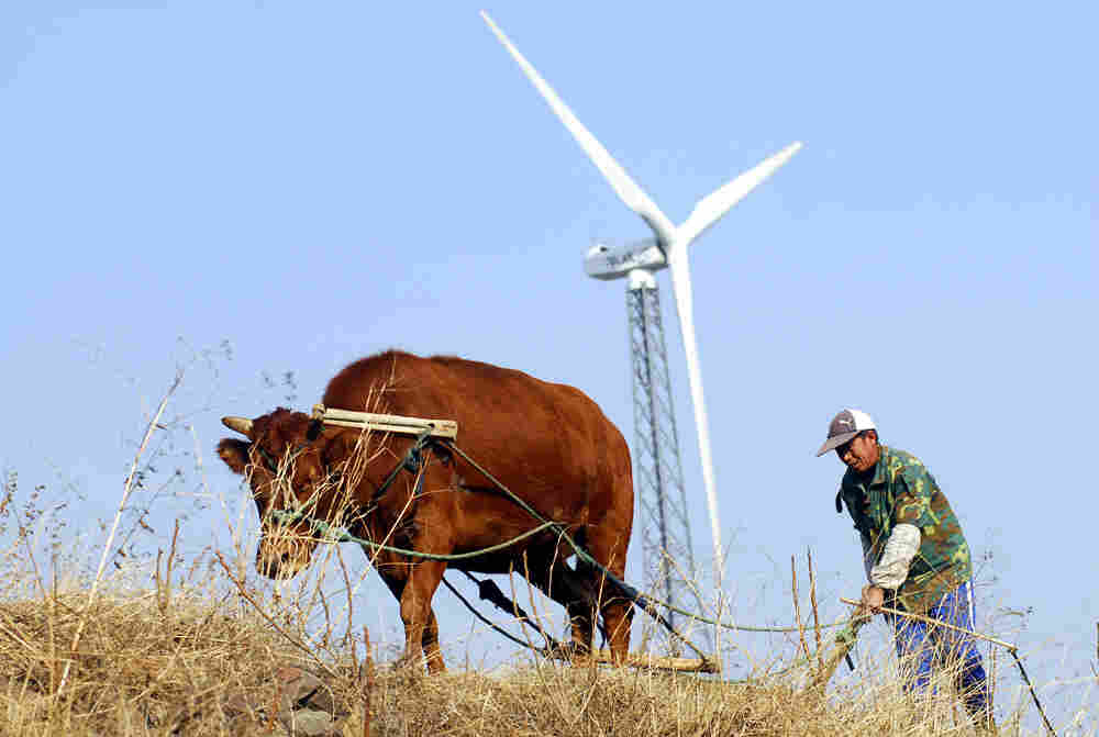 A Chinese wind turbine and a farmer plowing in the ancient method.