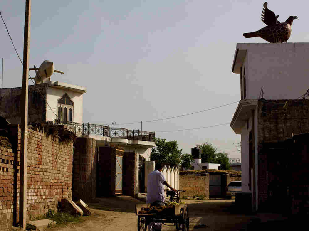 Wealthy Punjabis adorned the roofs of their homes with statues as a sign of prosperity. Atop the bui