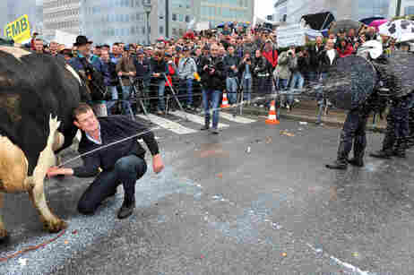 French protester shoots policemen with milk directly from cow's udder.