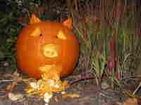 Pumpkin carved to look like pig with swine flu.