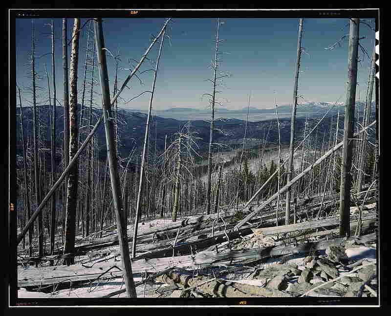 Sangre de Cristo Mountains between New Mexico and Colorado.  By John Collier, spring 1943.