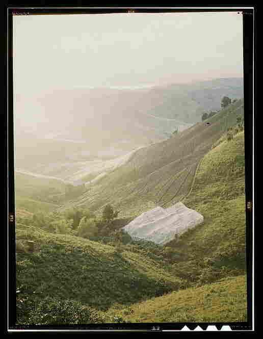 Tobacco country, near Barranquitas, Puerto Rico.  By Jack Delano, December 1941.