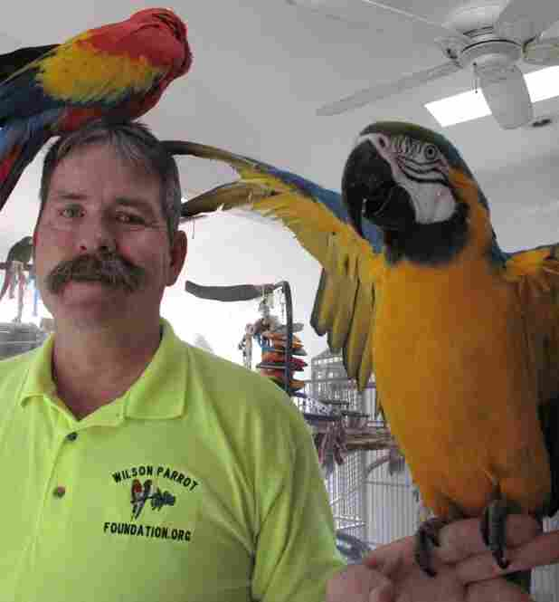 Brian Wilson, President of The Wilson Parrot Foundation, and friends.