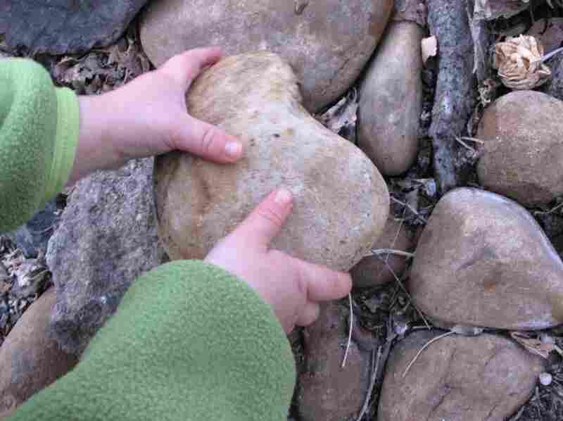 Hmm. Big rock.