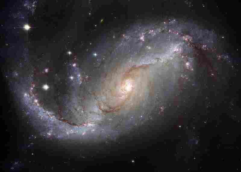"""This is Hubble's view of the """"nearby"""" barred spiral galaxy, NGC 1672.  Visible are dark filamentary dust lanes, young clusters of bright blue stars, red emission nebulas of glowing hydrogen gas, a long bright bar of stars across the center, and a bright active nucleus that likely houses a supermassive black hole. Light takes about 60 million years to reach us from NGC 1672."""
