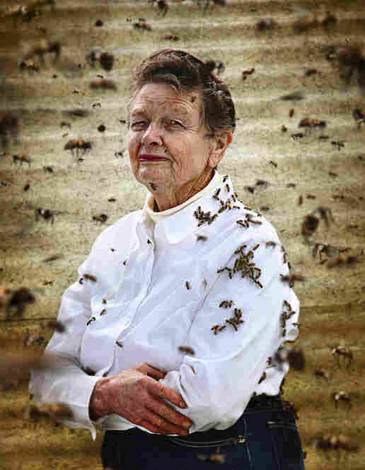 """Alice Wiemers cultivates grain, and raises livestock and bees in Hondo, Texas. """"We sweeten our beverages with honey, and I do some baking with it,"""" she says. """"No ma'am, we never get sick of it."""""""